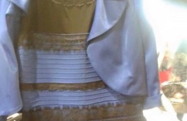 """The truth behind """"The Dress"""""""